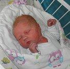 Dominika Klusová se narodila 28. ledna paní Natálii Klusové z Českého Těšína. Po porodu miminko vážilo 3600 g a měřilo 51 cm.