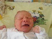 Sebastiánek se narodil 18. března mamince Šárce Wróblové z Karviné. Porodní váha miminka byla 3740 g a míra 50 m.