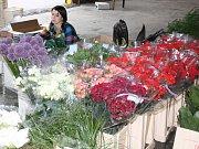Příprava květin pro zdobení alegorických vozů.