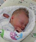 Tina Bartoszová se narodila 4. června paní Romaně Bartoszové z Hrádku. Porodní váha dítěte byla 3170 g a míra 48 cm.