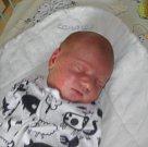 Kubíček Veselý se narodil 18. března paní Michaele Motykové z Karviné. Porodní váha chlapečka byla 3990 g a míra 52 cm.