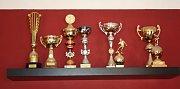 Padesát let existence klubu přihrálo Žukovu i několik trofejí.