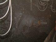 Podzemí černouhelných dolů na Karvinsku. Ilustrační snímek.