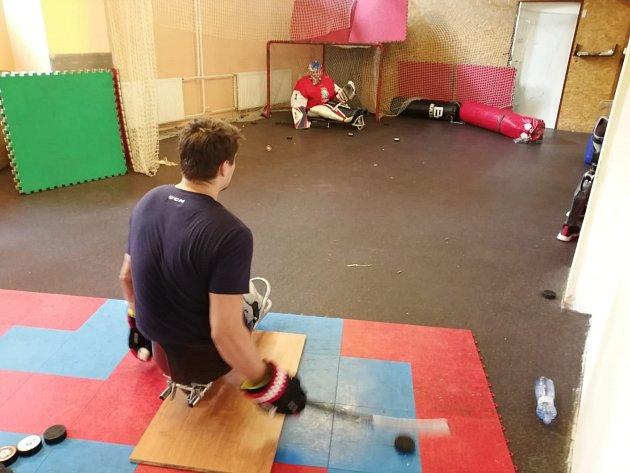 Čeští reprezentanti vparahokeji trénují vOrlové.
