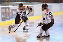 Karvinské hokejistky (v bílém) porazily doma dvakrát Kladno.