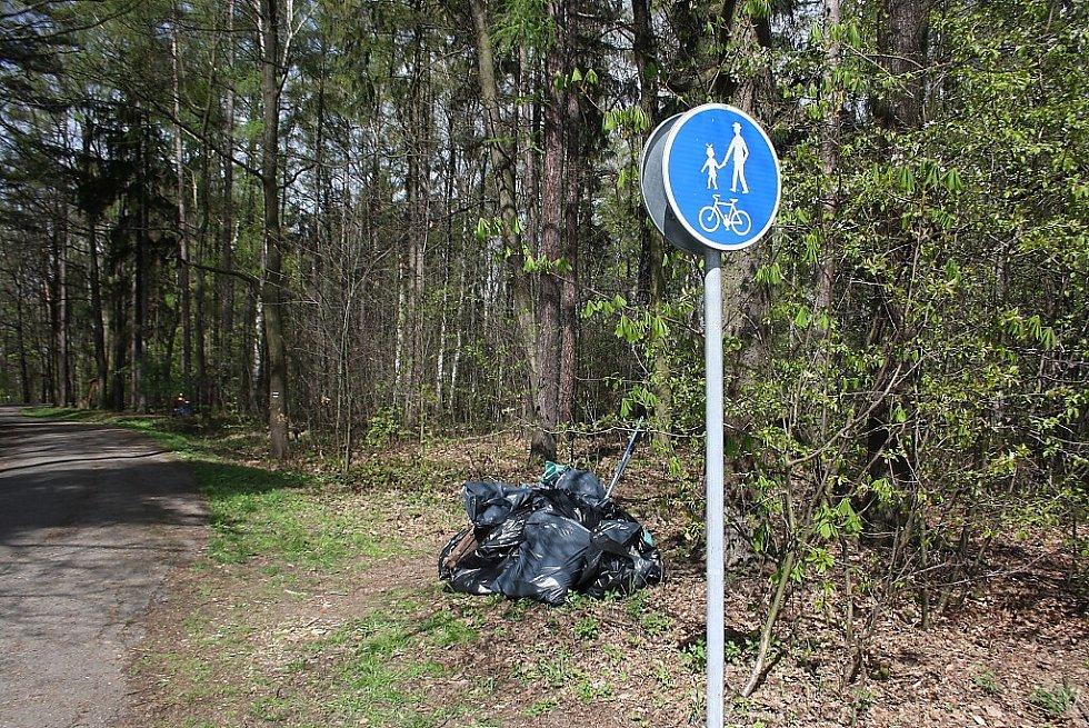 Vysbíraný odpad z lesoparku za Merkurem.