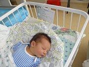 Davidek Szigó se narodil 20.července paní Veronice Klasové ze Stonavy. Porodní váha miminka byla 3350 g a míra 50 cm.