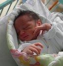 Tomášek Stipák se narodil 22. března mamince Žanetě Stipákové z Karviné. Porodní váha Tomáška byla 2350 g a míra 44 cm.