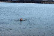 Už osmým rokem se noří vždy na Štědrý den v deset dopoledne do nádrže u místních šachet zvané Karvinské moře otužilci ze širokého okolí, na břehu jim fandí jejich rodiny, známí a další příznivci.