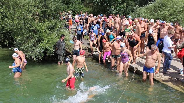 V této chvíli ještě plavci netušili, že bude jeden z nich potřebovat rychlou pomoc lékařů kvůli bodnutí vosou.