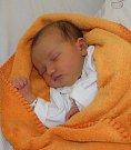 Nayeli Aviles Andrade se narodila 11. září mamince Beatě Aviles Andrade z Třince. Porodní váha miminka byla 3340 g a míra 50 cm.
