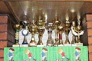 Poháry za vítězství si můžete prohlédnout v klubovně. Obstarávají je převážně fotbalistky.