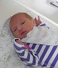 Petra Poledníková se narodila 15. února paní Janě Poledníkové z Dětmarovic. Po porodu dítě vážilo 2920 g a měřilo 48 cm.