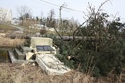 Při kácení stromů poblíž darkovského mostu se dělníkům podařilo poškodit také památník věnovaným obětem 1. sv. války.