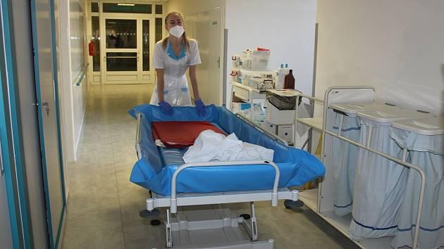 V karvinské nemocnici v Ráji pomáhají v těchto dnech také studenti Střední zdravotnické školy v Karviné, kteří tam vykonávají praxi.