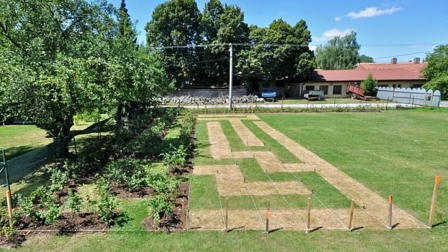 Labyrint bude tvořit 1300 habrů a vstoupit do něj zájemci budou moci dvěma způsoby.