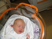 Maruška Wiegosová se narodila 5. února paní Marii Magátové z Karviné. Porodní váha Marušky byla 3070 g a míra 48 cm.