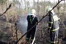 Požár, který vypukl v pátek odpoledne v Pežgovském lese, mezi Havířovem a Petřvaldem, se hasičům podařilo kolem sedmnácté hodiny dostat pod kontrolu.