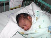 Michaelka se narodila 20. listopadu paní Ingrid Toráčové z Petrovic. Porodní váha miminka byla 2570 g a míra 48 cm.