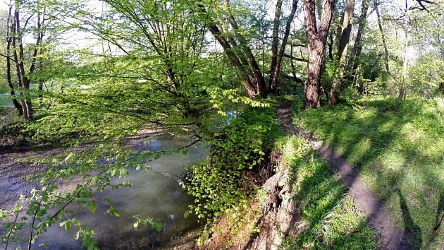 Břehy řeky Lučiny. Ilustrační foto