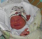 Brian Hospody se narodil 27. května paní Andree Hospodyové z Karviné. Po porodu miminko vážilo 3320 g a měřilo 50 cm.