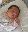 Stela Michnová se narodila 4.září paní Michaele Jurcové z Orlové. Porodní váha holčičky byla 3250 g a míra 50 cm.