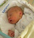 Adámek Krajčovič se narodil 20. září paní Adéle Krajčovičové z Bohumína. Po porodu miminko vážilo 3390 g a měřilo 49 cm.