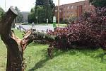 Zlomený strom v havířovské ulici Na Nábřeží.