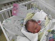Sofie Ferková se narodila 4. ledna paní Lucii Ferkové z Karviné. Porodní váha Sofinky byla 2910 g a míra 48 cm.
