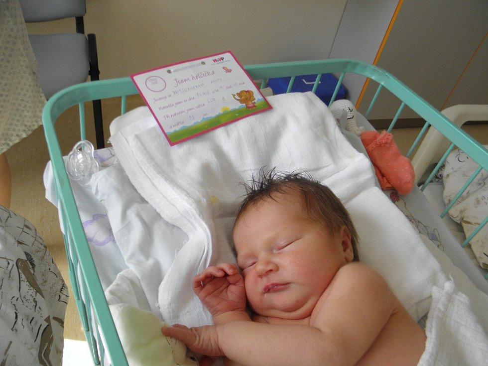 Anetka se narodila 9. dubna paní Zuzaně Brieslingerové z Karviné. Porodní váha Anetky byla 4250 g a míra 53 cm.