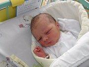Petr Molínek se narodil 15. listopadu paní Kateřině Molínkové z Karviné. Porodní váha chlapečka byla 3350 g a míra 51 cm.
