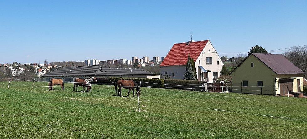 Orlová-Poruba. Pohled z Poruby na paneláky v centru Orlové.