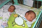 Dvojčátka Honzíček a Matyášek se narodila 8. září paní Janě Rohrsetzer z Bohumína. Po narození Honzíček vážil 2930 g a měřil 47 cm, jeho bráška Matyášek vážil 2870 g a měřil 45 cm.