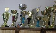 Trofeje nasbírané za posledních pár let.
