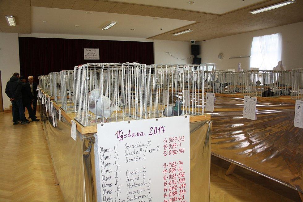 Výstava v Horní Suché byla i příjemným společenským setkáním holubářů, jejich přátel i dalších fanoušků tohoto zajímavého koníčku.