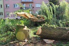 Silný noční vítr z neděle na pondělí zlomil několik vzrostlých stromů v karvinských  ulicích.