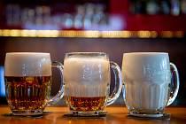 Pivo v Hobbyparku dočasně zakázali.