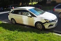 Došlo ke sražení psa plemene baset osobním motorovým vozidlem Opel Astra kombi, bílé barvy, kterému pes vběhl bezprostředně do jízdní dráhy. Pes po střetu z místa nehody odběhl, na vozidle byla způsobena škoda v řadách několika desítek tisíc.