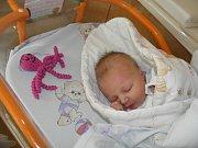 Vivien Kornalíková se narodila 25. dubna paní Sandře Kohoutové z Českého Těšína. Po porodu holčička vážila 3580 g a měřila 50 cm.