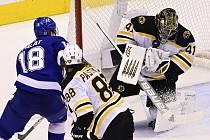 Čeští střelci. Brankář hokejistů Bostonu Jaroslav Halák kryje střelu Ondřeje Paláta (vlevo) z Tampy Bay, dole útočník Bruins David Pastrňák. Oba se v utkání trefili, spokojený byl ale jen Palát.