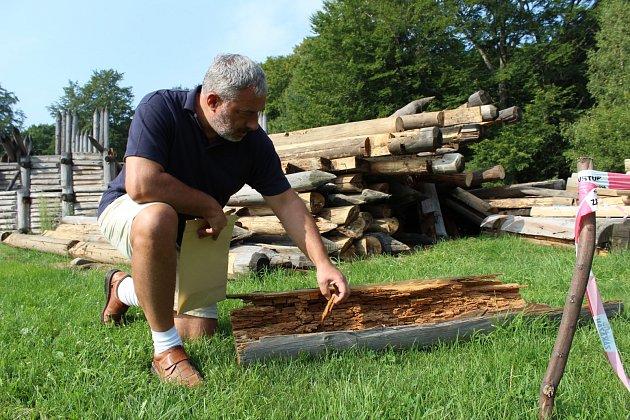 dřevo by se postupně stávalo nebezpečné ipro návštěvníky a zaměstnance archeoparku. Na snímku ukazuje zničené kusy modelu slovanských hradeb ředitel Muzea Těšínska Zbyšek Ondřeka.