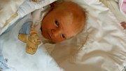 Jan Ledwoń se narodil 12. října v porodnici v Karviné. Vážil 3500 g a měřil 50 cm.