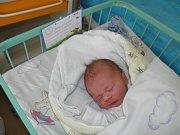 Davidek se narodil 10. května mamince Zuzaně Kokoškové z Karviné. Po narození dítě vážilo 3120 g a měřilo 46 cm.