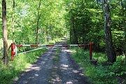 Zatímco běžná silnice je průjezdná, lesní cesta je uzavřená závorou. Podle lesáků však řidiči nesmí jezdit ani po neuzavřené cestě.