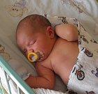 Dominik Hříbek se narodil 4. září paní Janě Trudičové z Karviné. Po porodu miminko vážilo 4000 g a mřilo 51 cm.