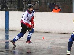 Hokejbalisté Karviné vytěžili doma jen tři body.