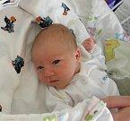 Karolínka Petrželová se narodila 15. února paní Šárce Umorczykové z Chotěbuze. Po narození dítě vážilo 3280 g a měřilo 49 cm.