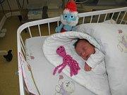 Danielka se narodila 9. května paní Janě Filipové z Karviné. Porodní váha holčičky byla 2700 g a míra 47 cm.