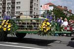 Havířov v květech.