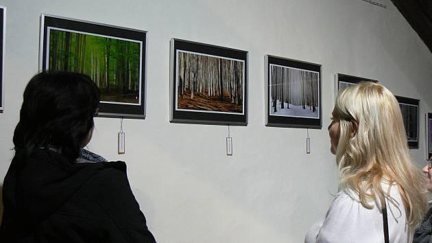 Ilustrační foto.